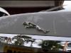 jaguar-xf-all-that-gleams-19