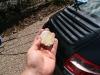 porsche-carrera-car-detailing-surrey-all-that-gleams-36
